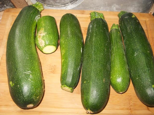 Gesizzelte Zucchini-Küchle aus der Sommerküche - Das Leben ist schön