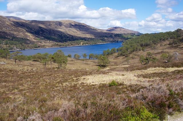 Schottland 2014 – The Glen Affric & Speyside