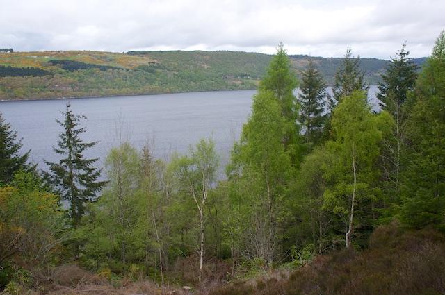 Schottland3 14