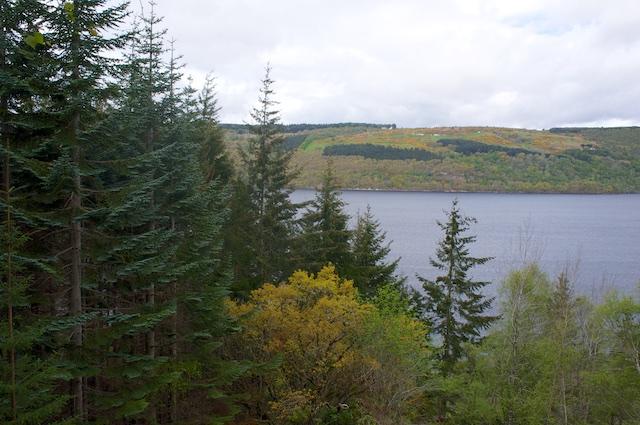 Schottland3 16