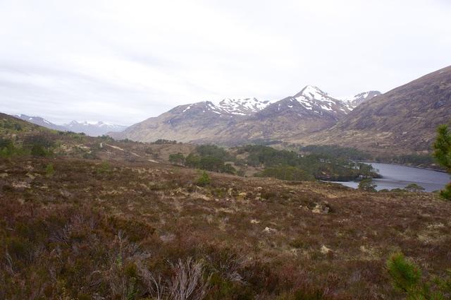 Schottland3 6