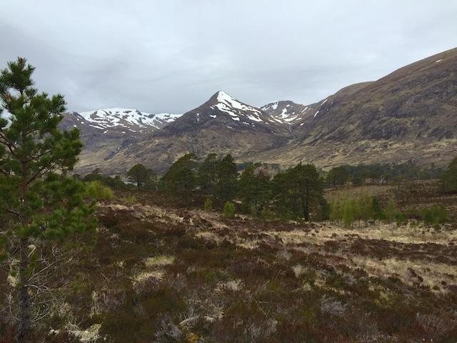 Schottland3 7