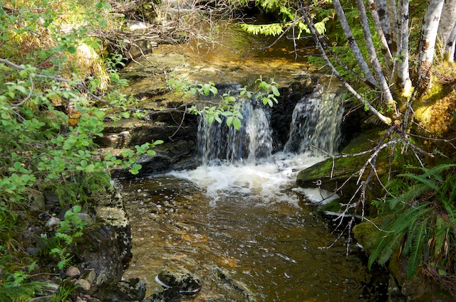 River Oich 15