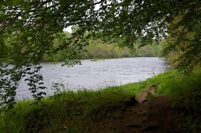 River Oich 19