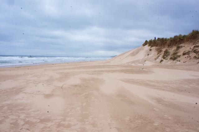 Schottland 2016 – Am Strand von Lossiemouth