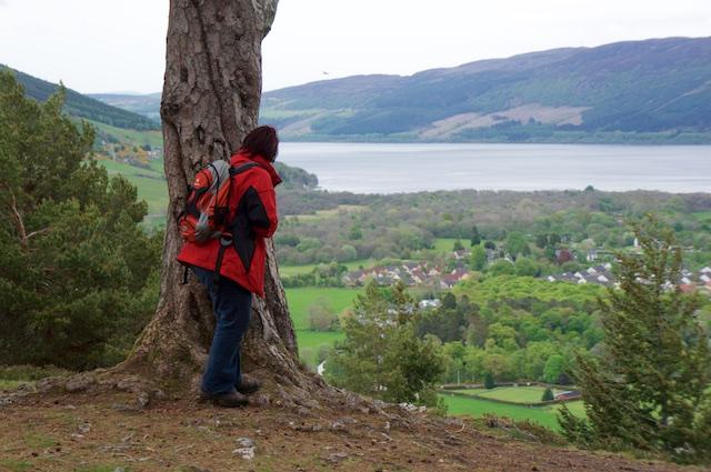 Schottland 2017 – Balmacaan und Craigmonie Wood